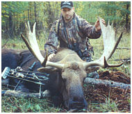 alberta canada moose hunts